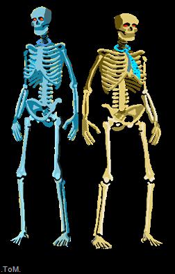 Ghastlia's Wedding Day Bones-and-clunk